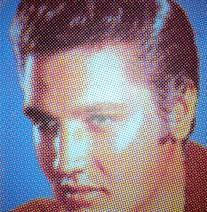 Elvis screen print